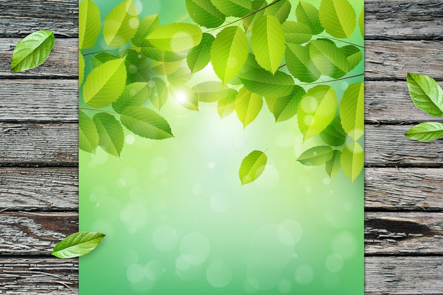 Summer Background with Leaves Design