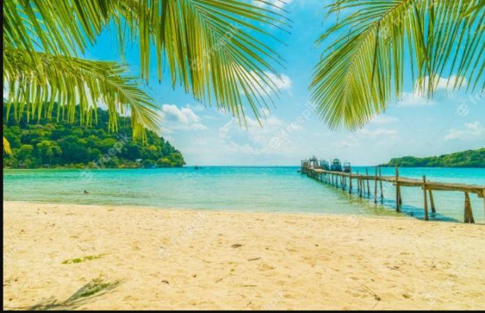 Tropical Beach Background Design