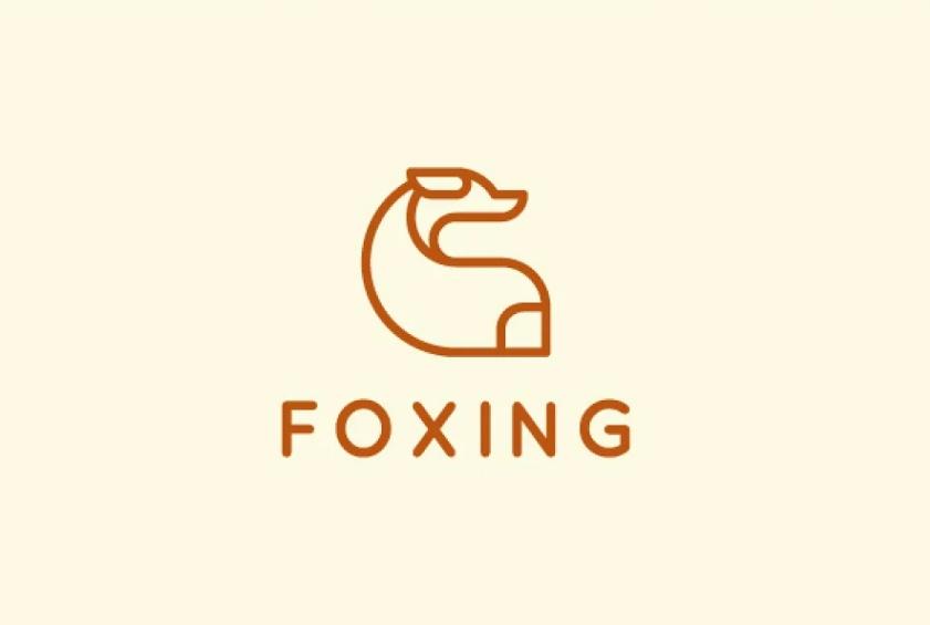 fox and Dog Style Identity Design