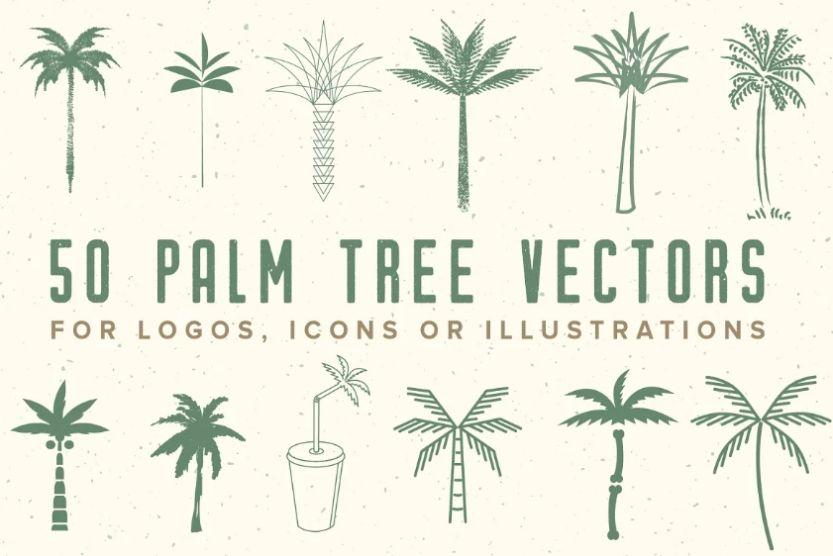 50 Palm Tree Vector illustrations