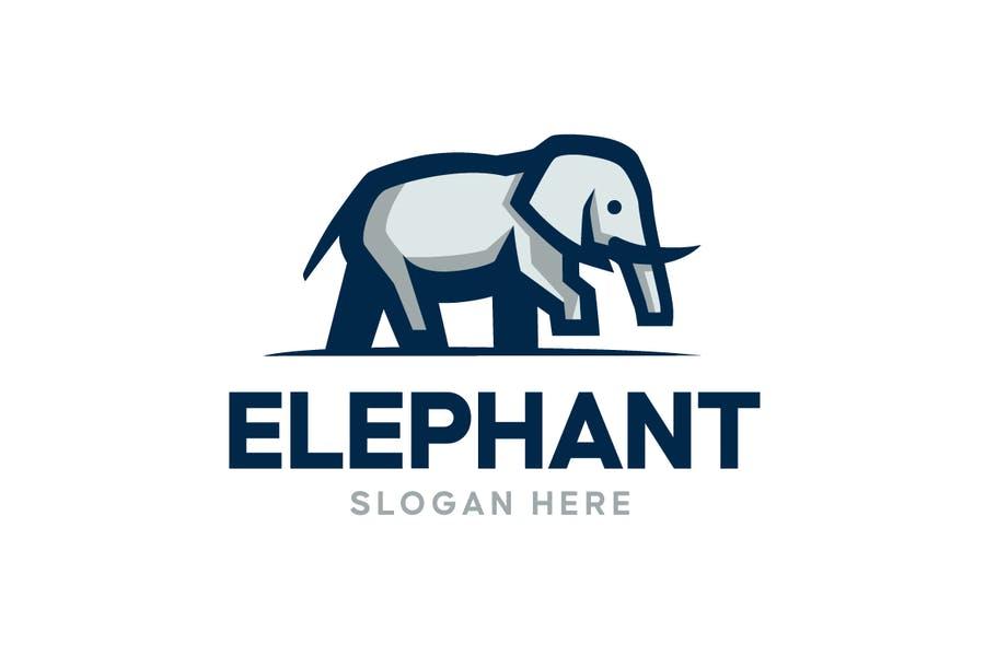 Colorful Elephant Identity Design