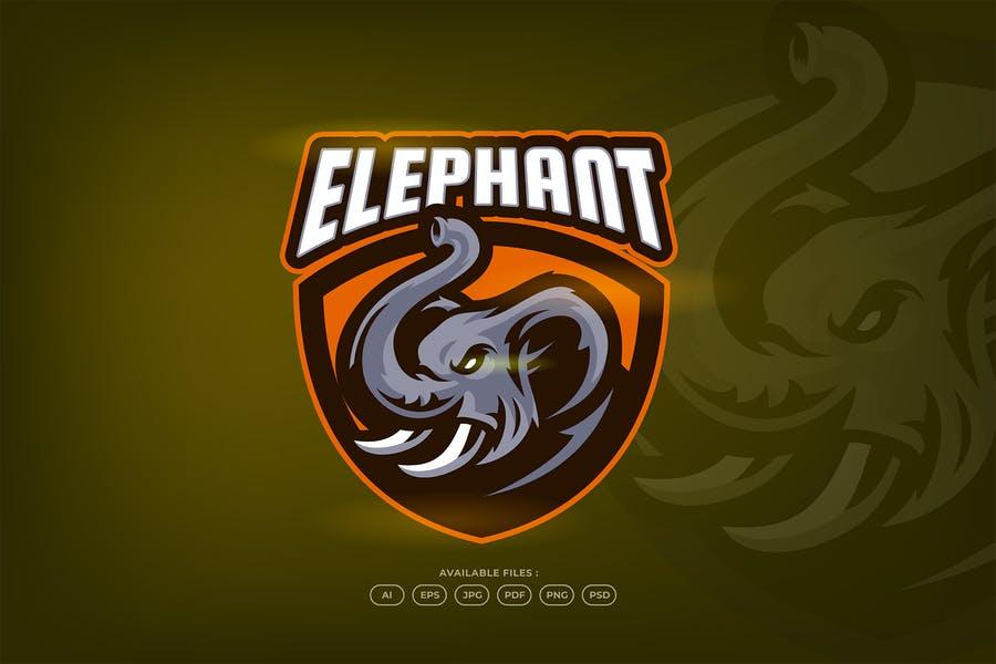 ESports Identity Designs