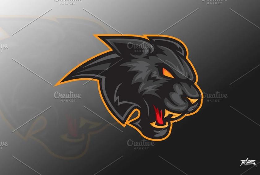 Panther Head Logo Identity