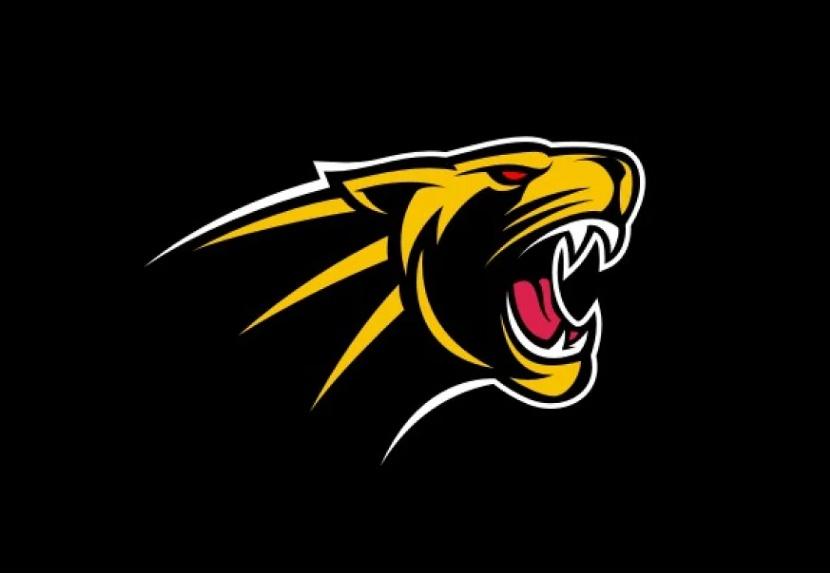 Panther Roar Logo Templates