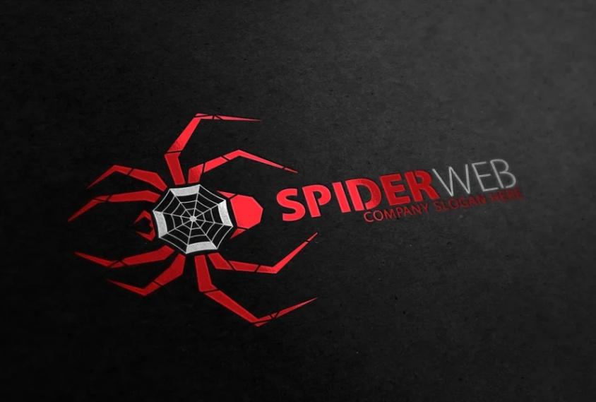 Spider Web Identity Design