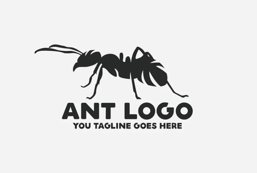 Creative Agency Branding Design