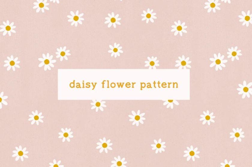 Daisy Flower Pattern Design
