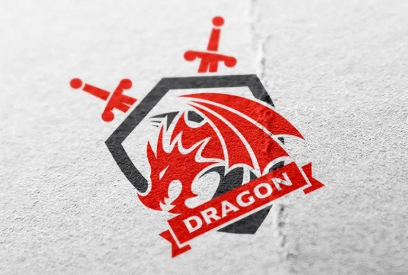 Dragon Force Identity Design