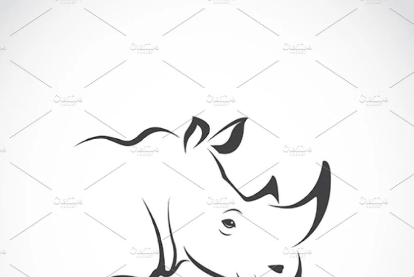 Isolated Rhino Identity Design