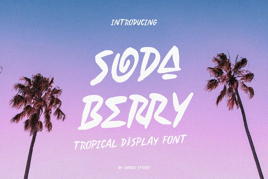 Professional Tropical Display Fonts