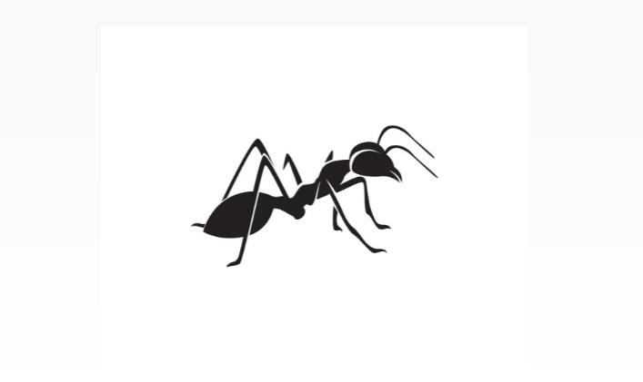Simple Ant Identity Design
